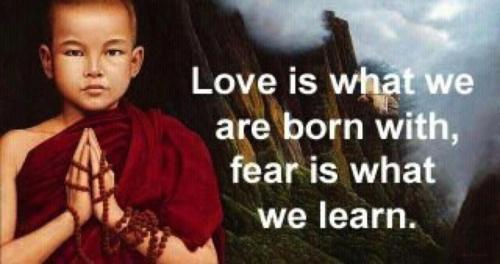 Con amor nacemos; el temor lo aprendemos.